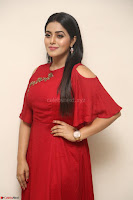 Poorna in Maroon Dress at Rakshasi movie Press meet Cute Pics ~  Exclusive 187.JPG