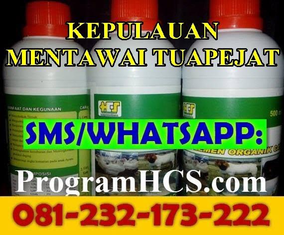 Jual SOC HCS Kepulauan Mentawai Tuapejat