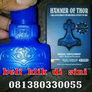 jual hammer of thor di medan 081380330055 minyak lintah oil di