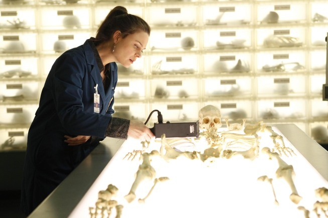 Bones - Season 5 Episode 16 Online for Free - #1 Movies Website