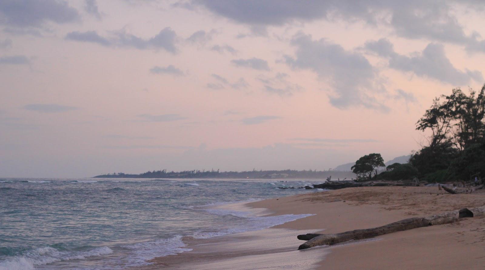 夜明けの淡い桃色の浜辺