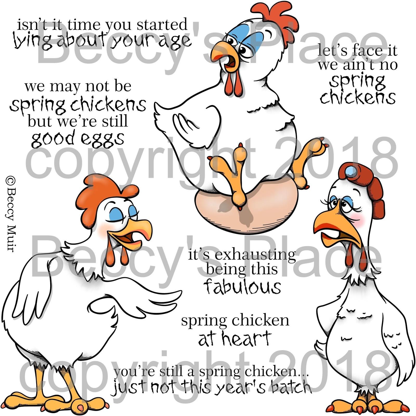 spring chickens 6