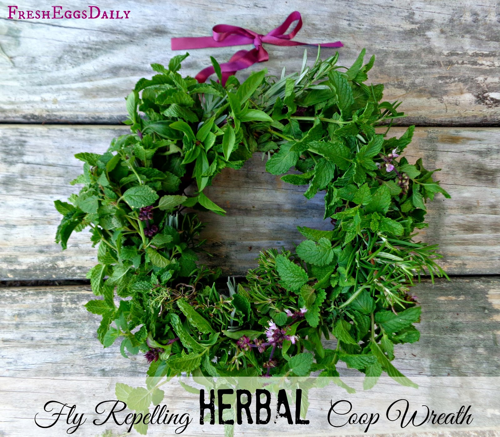 fly repelling fresh herb wreath for your chicken coop fresh eggs