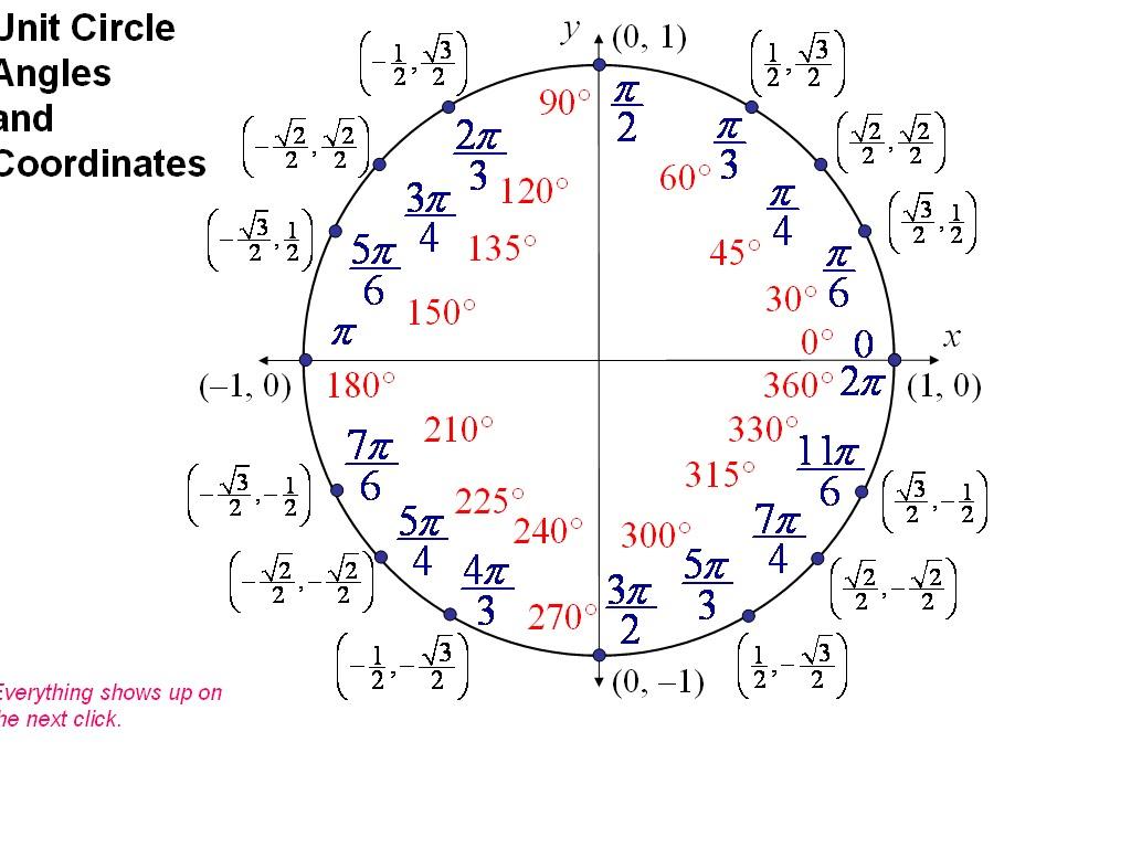 Help with algebra 2 homework online Photo Art By Celia