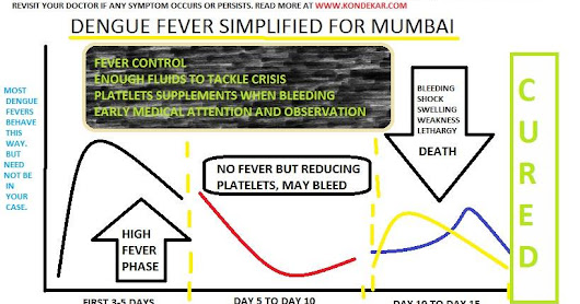 dengue fever protection and prevention Mumbai India when to worry?
