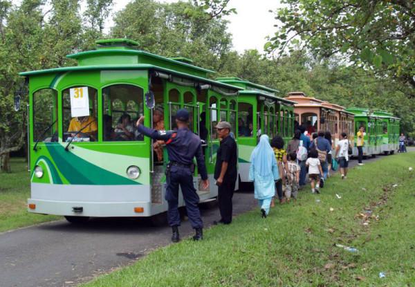 Naik kereta keliling memutari Taman Wisata Mekarsari Bogor