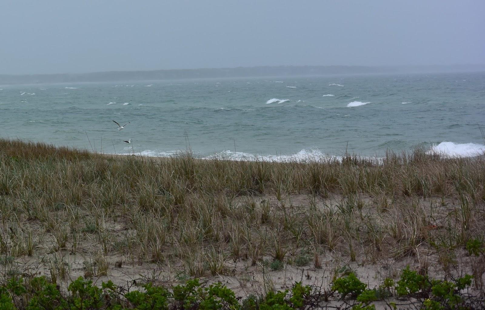 Ocean views from Oak Bluffs, Martha's Vineyard
