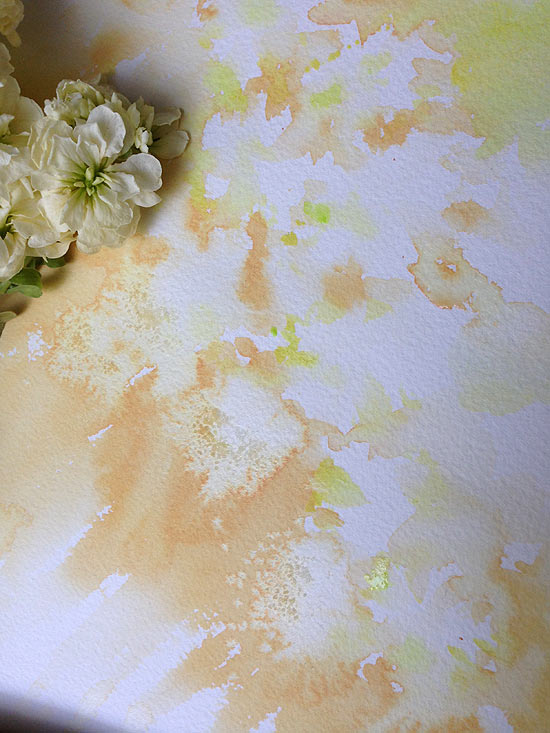 Original milky stock flower watercolor painting in process by Olga Peregood. Fragment of first layer.