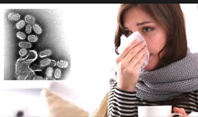 Cara Mengobati Flu Tanpa Obat Kimia Cepat Sembuh Dalam Sehari Saja