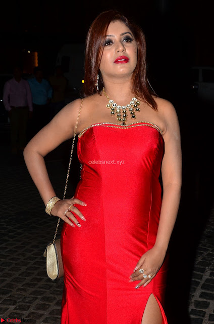 Sejal Jen Shah in Strapless Sleeveless Deep neck Red Gown at 64th Jio Filmfare Awards South ~  Exclusive 006.JPG