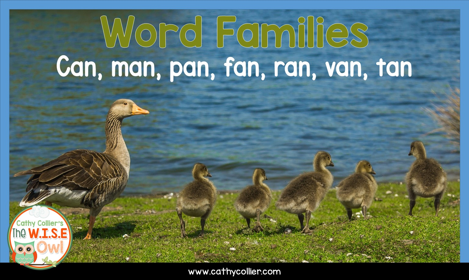 Can Man Pan Fan Ran Van Tan
