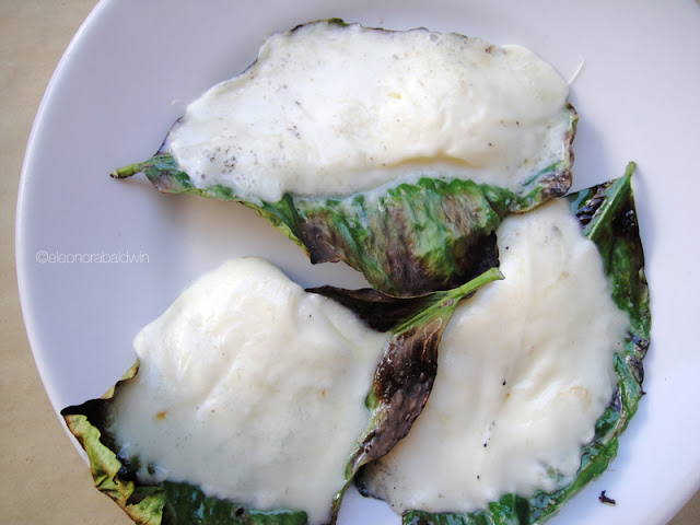 fiordilatte mozzarella grilled on a lemon leaf