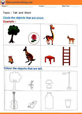 Tall and short worksheet