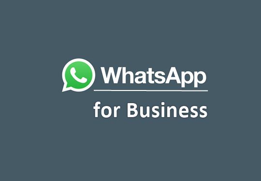 info-about-whatsapp-business