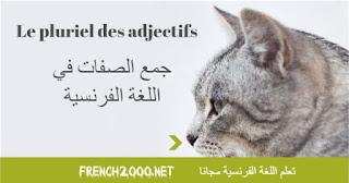 Le pluriel des adjectifs  جمع الصفات في اللغة الفرنسية