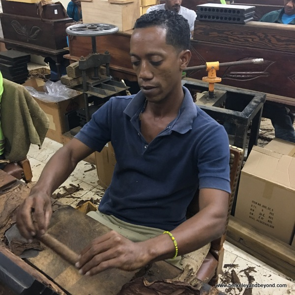 Graycliff Cigar Company factory tour in Nassau, Bahamas