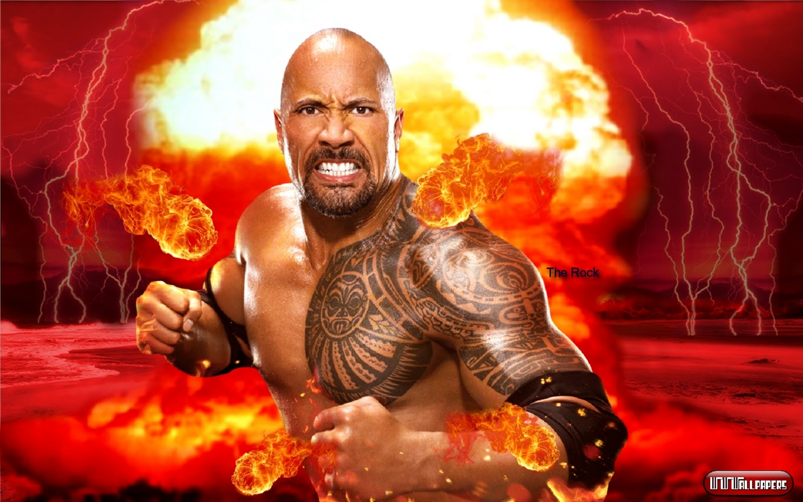 All About Wrestling Stars The Rock Wallpapers The Rock