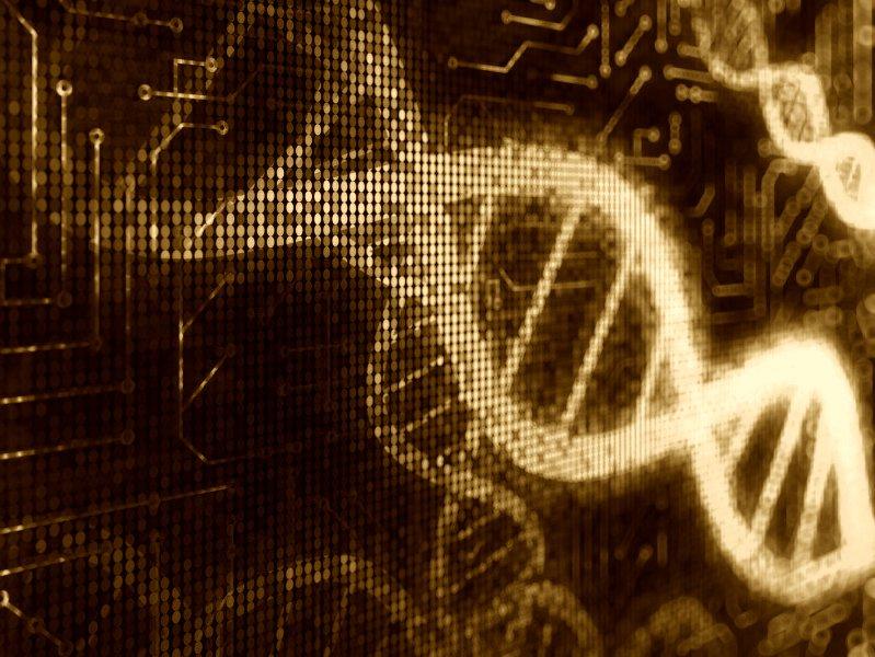 Bildergebnis für human genome digitized images