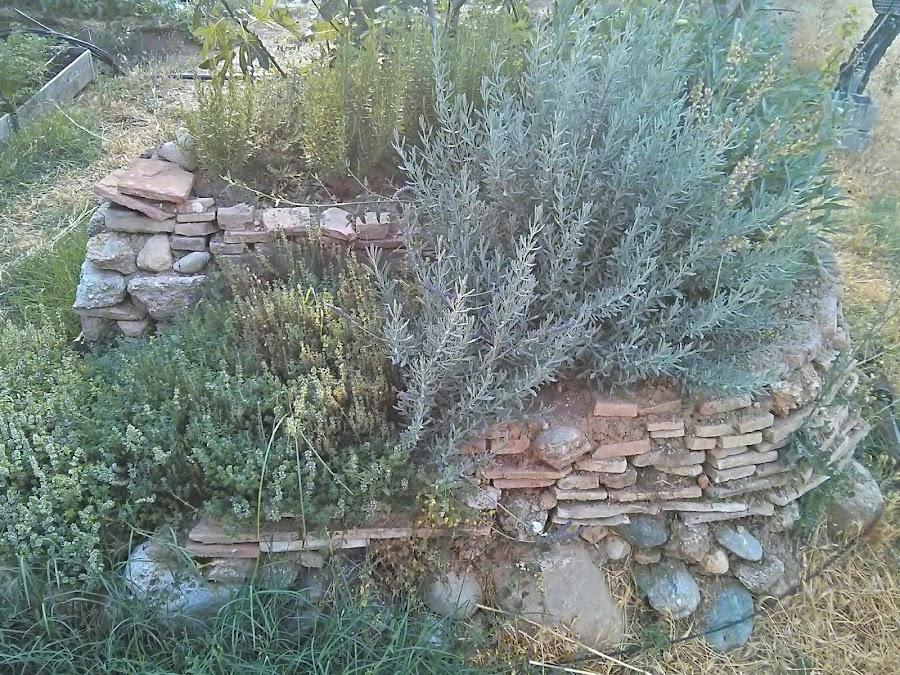 Bancal de aromáticas con muro de piedra para dar cobijo a pequeños y medianos animales.