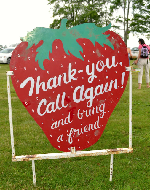 Strawberry picking, picking strawberries, field trips for kids, field trip ideas, Heeman's