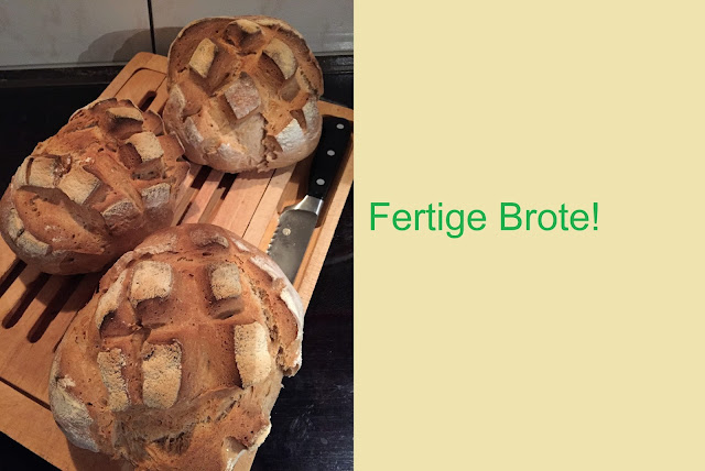 Eigenes Brot selber gebacken