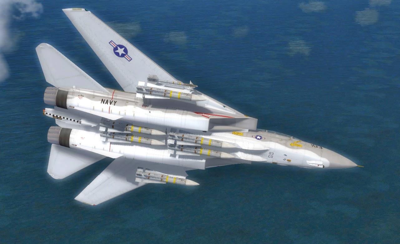 Dino Cattaneo's F-14D Tomcat Version 2 25