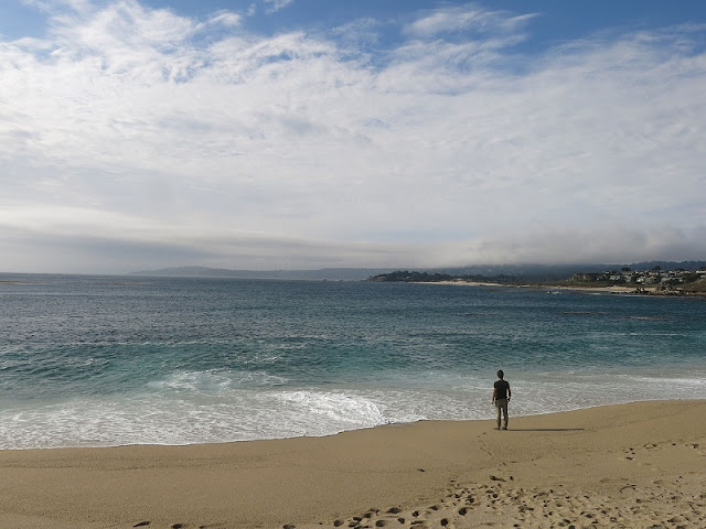 Visita a Carmel River State Beach em Big Sur