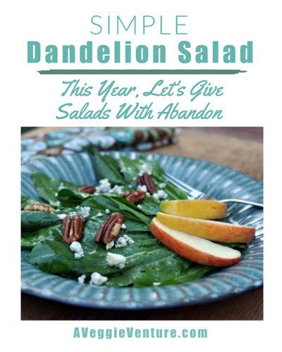 Simple Dandelion Salad, another simple seasonal salad ♥ AVeggieVenture.com