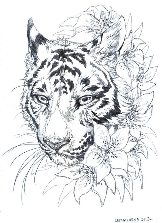 tiger-tattoos-for-girls-13 15 Most Amazing Tiger Tattoos For Women tattoo