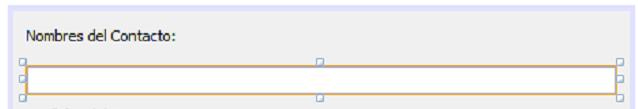 Caja de texto seleccionada
