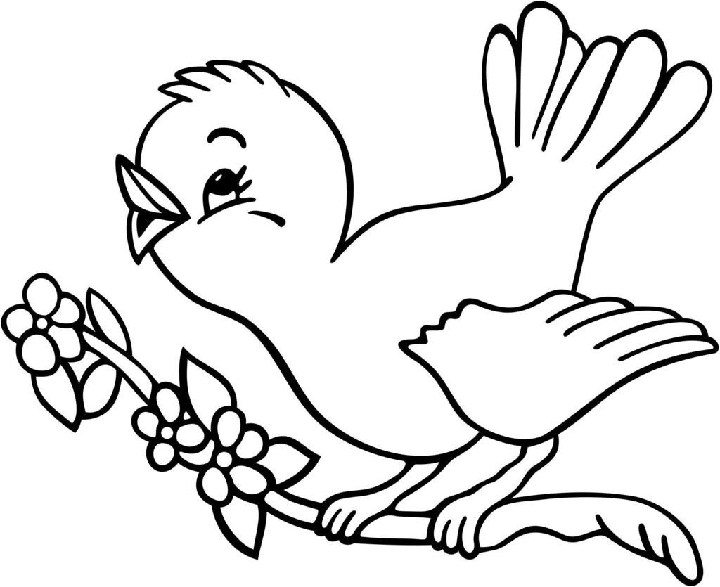 Edukasi Anak Belajar Mewarnai Gambar Binatang Burung