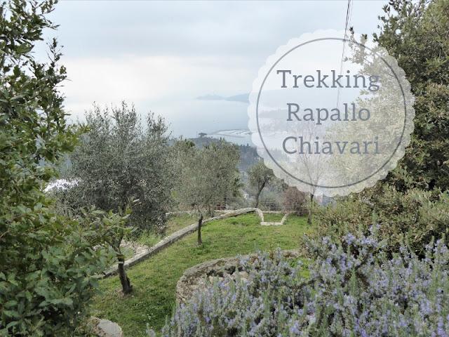 Veduta di Rapallo salendo a Montallegro