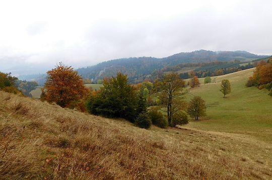 Widok ze skraju Polany Janeczków.