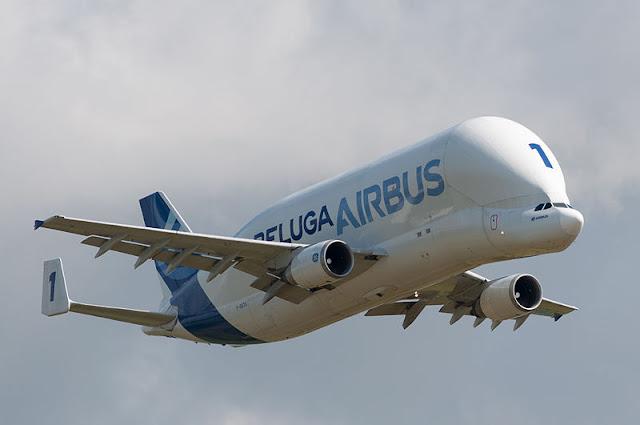 Gambar Pesawat Airbus Beluga 06