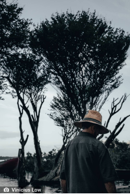 ambiente de leitura carlos romero cronica poesia literatura paraibana gonzaga rodrigues amazonia incendio pantanal desprezo meio ambiente devastacao floresta amazonica