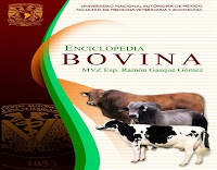 enciclopedia-bovina