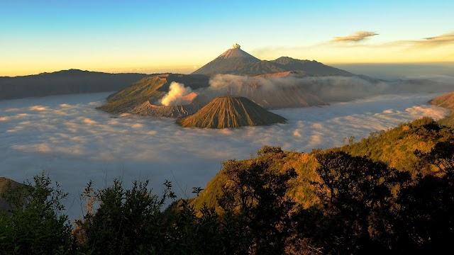 Simaksi Online - Pendakian Gunung Semeru Terpercaya No. 01 Di Indonesia