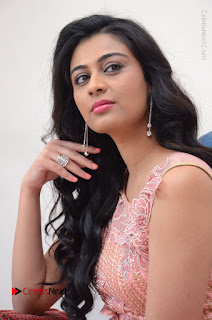 Actress Neha Hinge Stills in Pink Long Dress at Srivalli Teaser Launch  0087.JPG