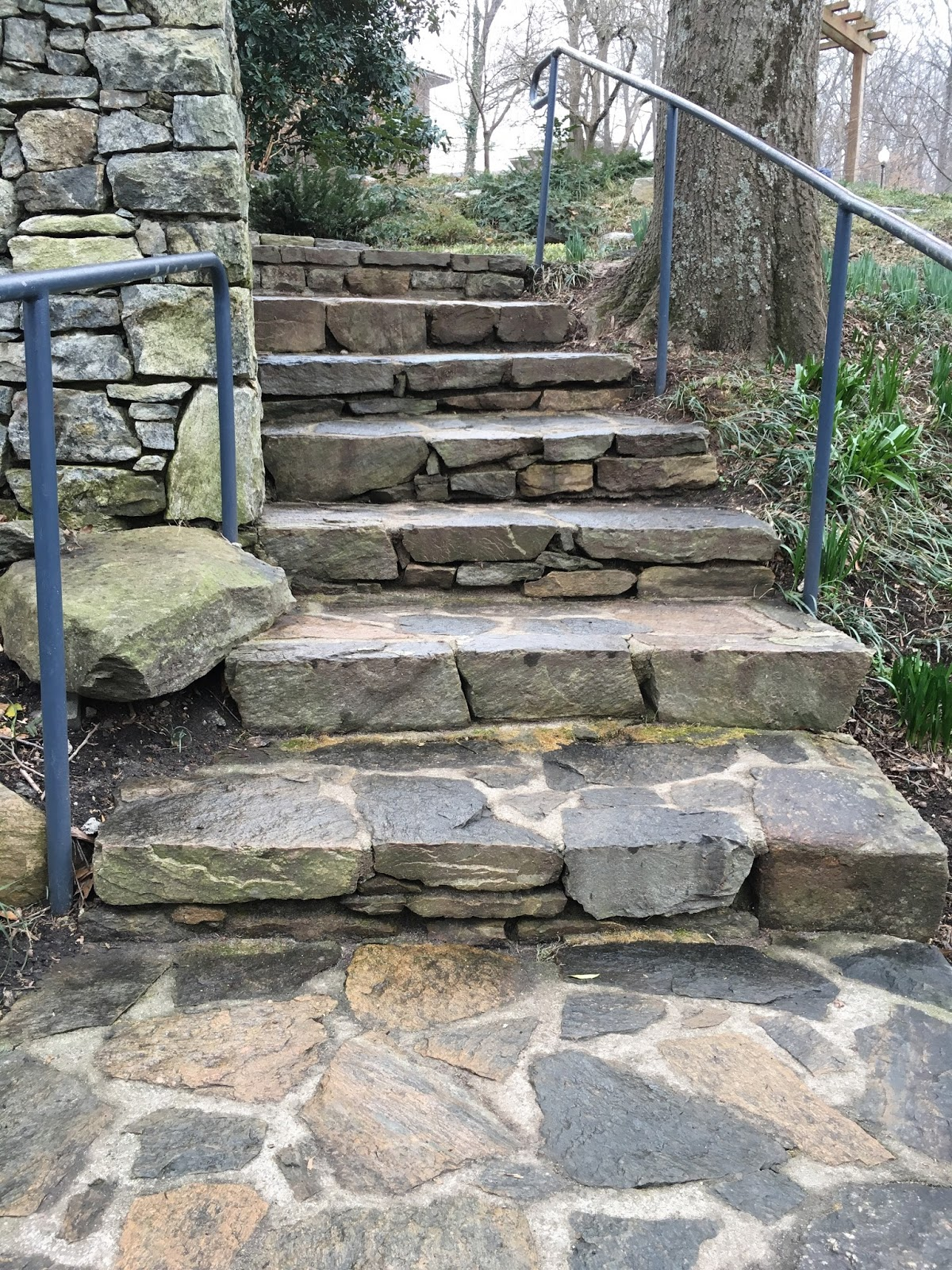 falls park steps greenville sc