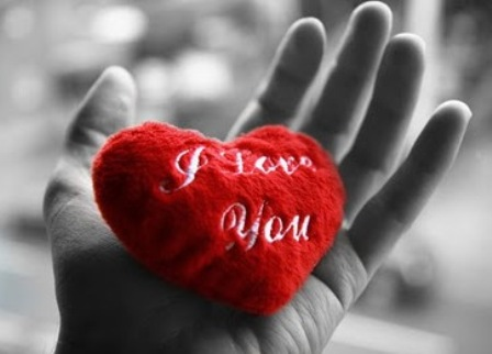Download Free Most Beautiful I love you Desktop Photos ...