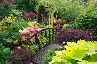 jardin con puente de madera