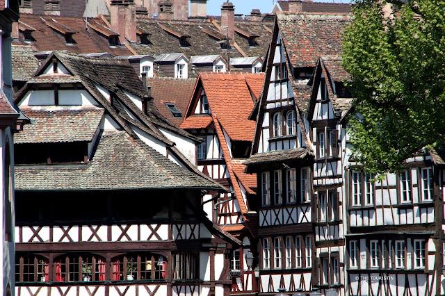 Wisteria Petite France Strasbourg