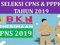 INGAT! Tak Hanya PPPK, Pemerintah Juga Bakal Buka Seleksi CPNS 2019