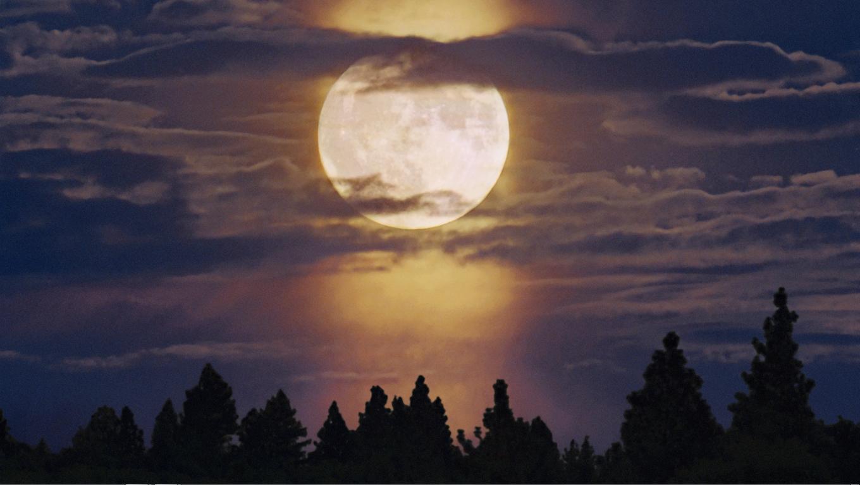 ay ışığı ve mehtap ile ilgili görsel sonucu