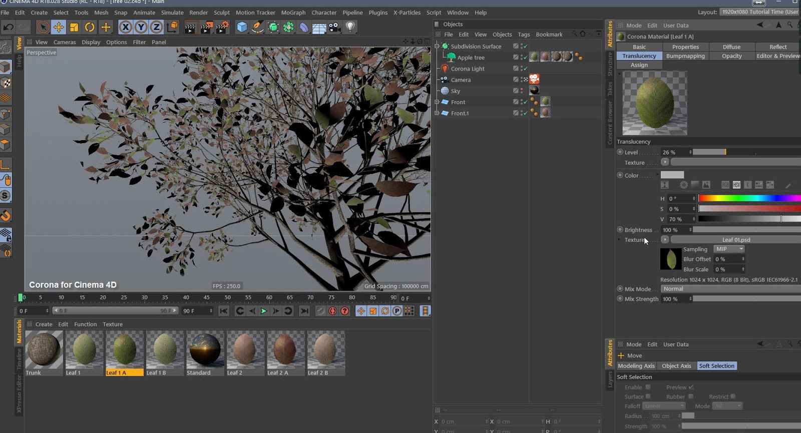 Creating Leaves and Trees shader with Corona for Cinema 4D | CG TUTORIAL