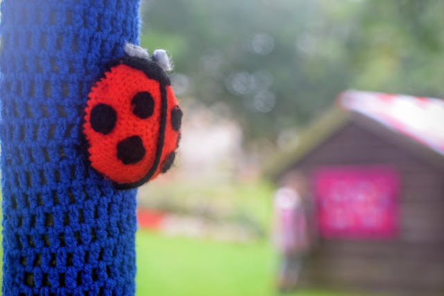 knitted ladybird, knitted ladybug, #RoaldDahl100, yarn bomb, Haverfordwest Yarn Bombers, Milford Haven, Pembrokeshire, Roald Dahl,