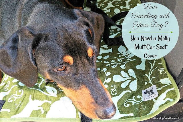 doberman rescue dog molly mutt car suv cover