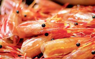 Những bộ phận trên gia cầm và tôm cá có nhiều độc tố không nên ăn