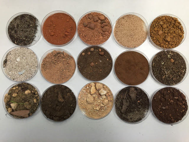 Relationship between soil color and climate for Why are soils different