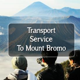 transport bromo